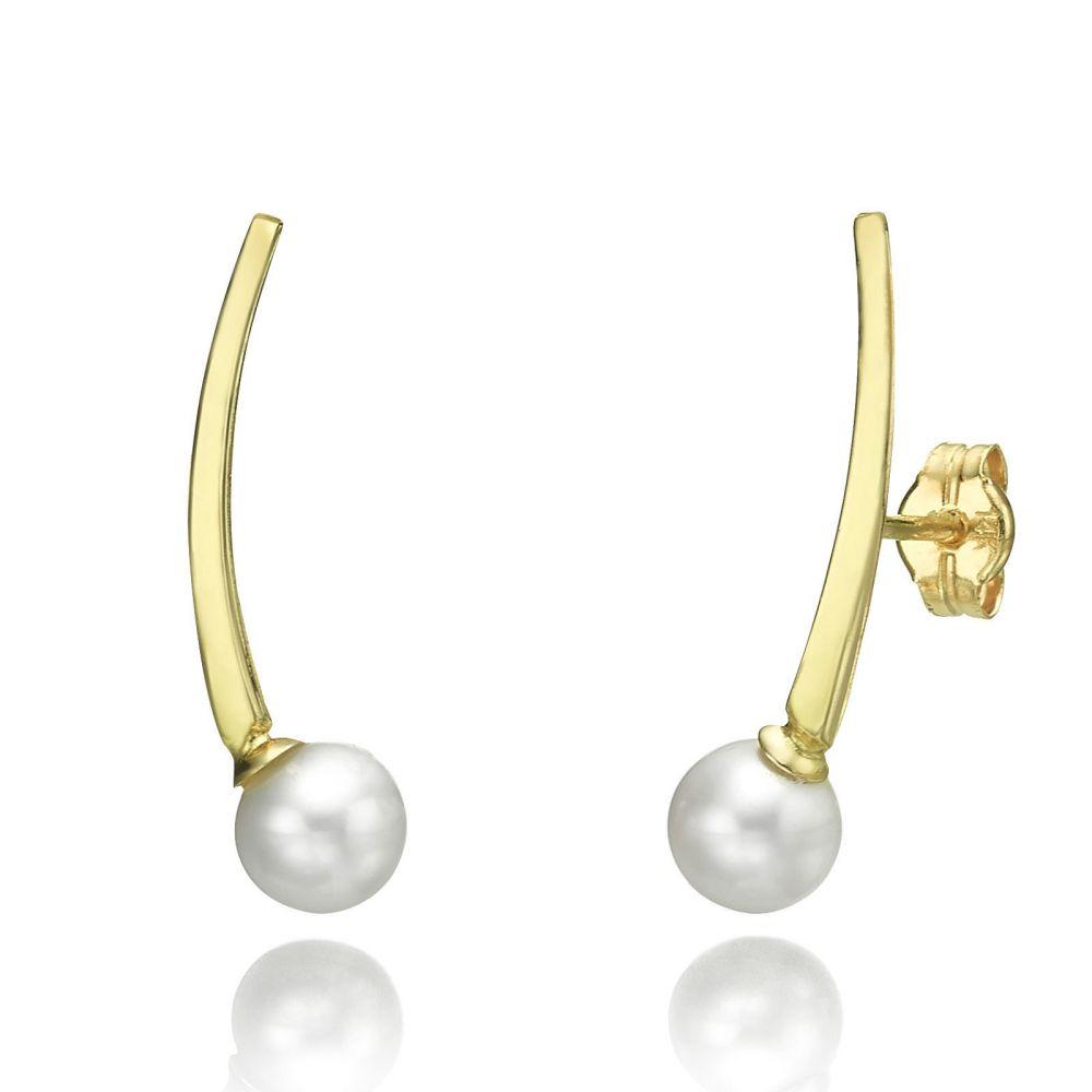 תכשיטי זהב לנשים | עגילים מטפסים מזהב צהוב 14 קראט - ארידנוס