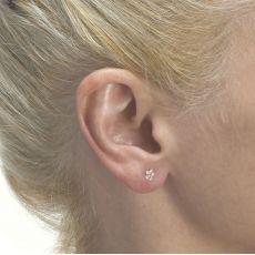 עגילי זהב צמודים -  פרח סיגלית