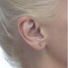עגילי זהב צמודים -  עיגול קלאסי-קטן