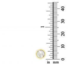 עגילים צמודים מזהב צהוב 14 קראט - צדף עגול